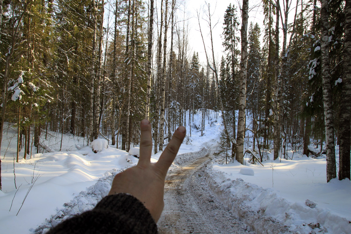 срезаем крюк через лес